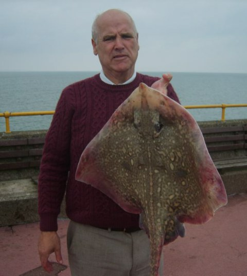 Michael Crotty with his 13lb 14oz (6.28kg) thornback ray caught from the pier using bluey.
